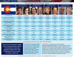 colorado-st-english-voter-guide