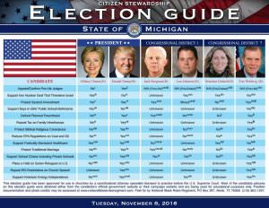 michigan-english-voter-guide